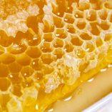 Panal de Miel en envase